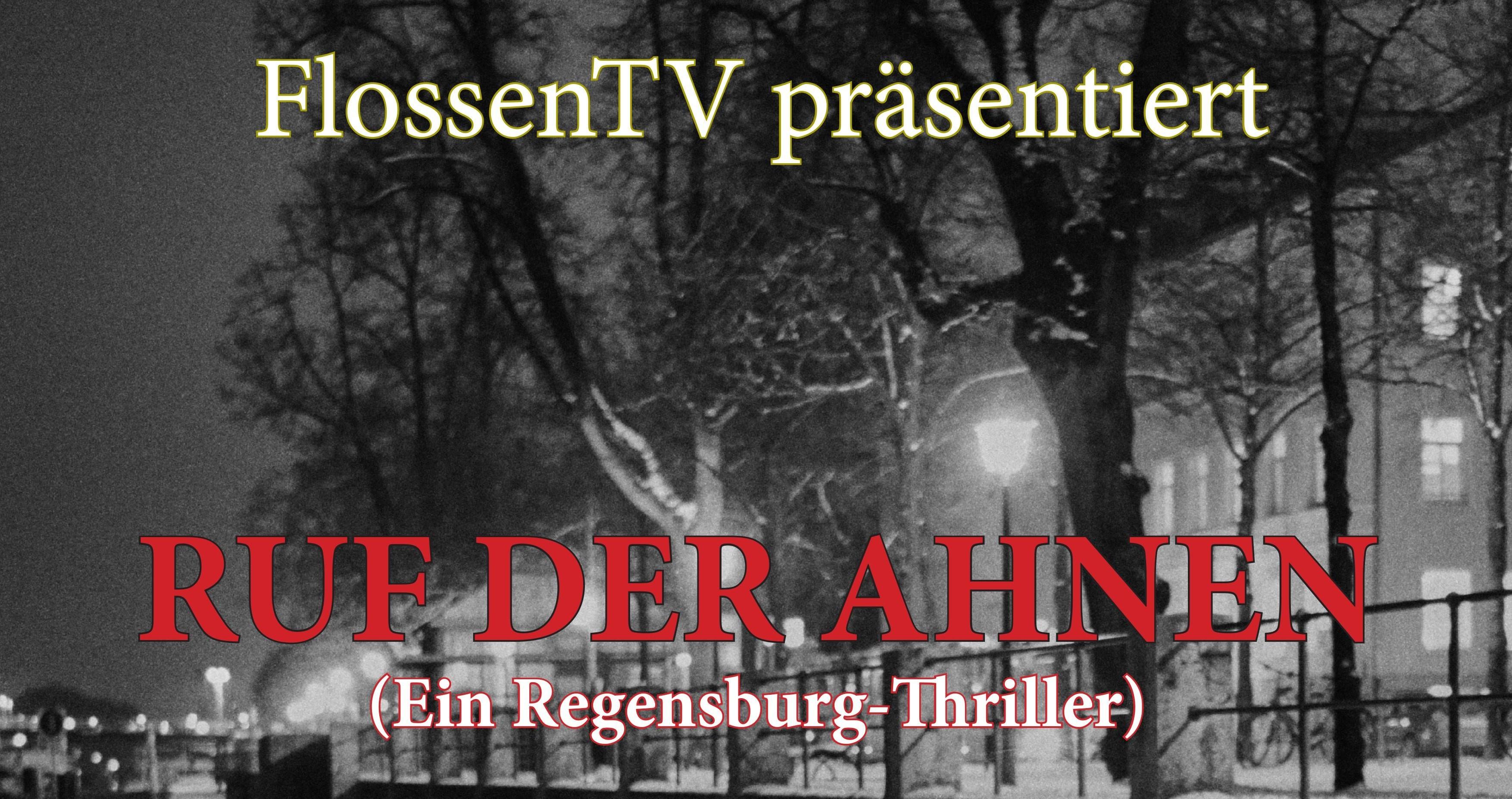 Ein Winterthriller in und um Regensburg