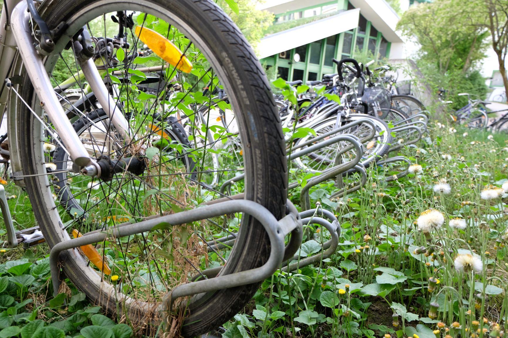 Der Fahrrad-Friedhof vor dem Wohnheim