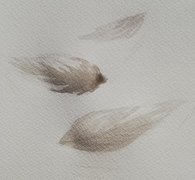 Kommt ein Vogel geflogen …