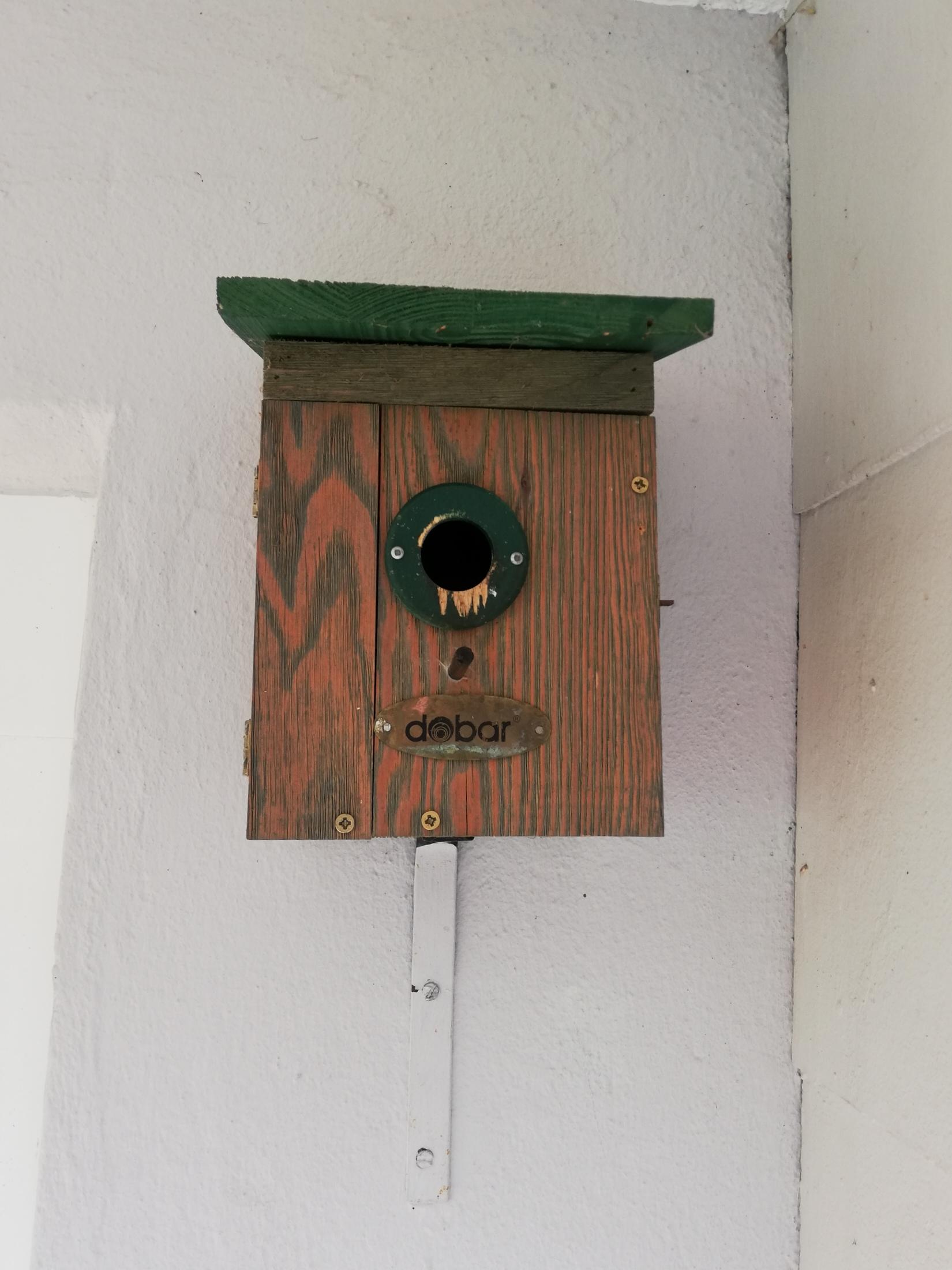 Wohnsinn-Kolumne: Sturmfrei im Vogelhaus