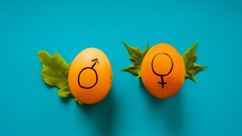 Feminis:muss: Das generische Maskulinum – Grenzen unserer Sprache